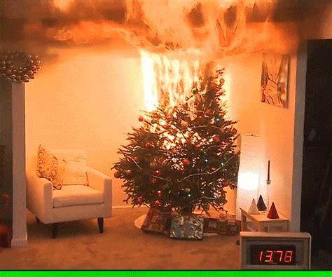 sarcastic merry christmas gif  sabato visconti find share  giphy