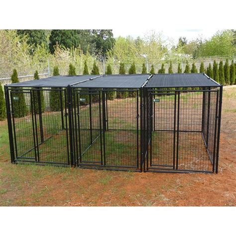 heavy duty kennels akc 5 x 10 x 6 ft premium heavy duty kennel 3 run with common walls for the