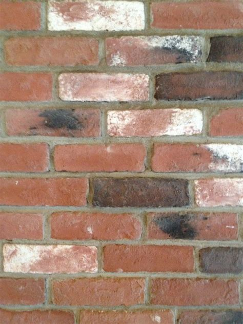 Thin Bricks For Interior Walls by 21 Best Images About Brick Thin Brick Interior Walls On