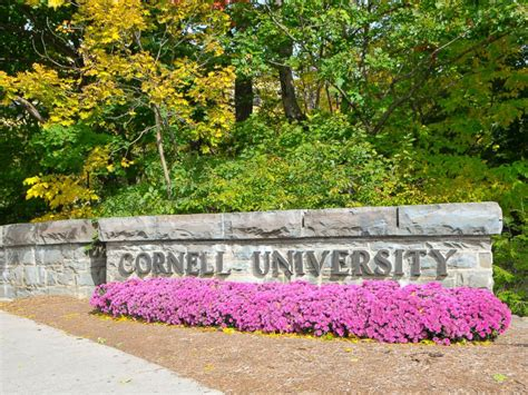 Cornell Finder Find Of Missing Cornell Student