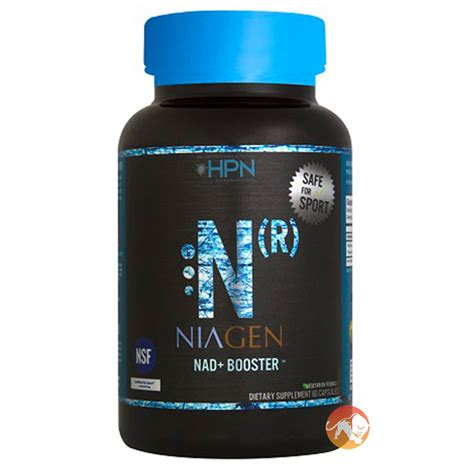 n r supplement high performance nutrition n r predator nutrition