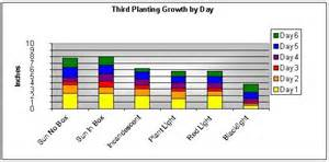 does the color of light affect plant growth how does light affect plant growth images frompo 1