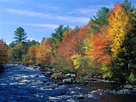new fall colors new fall foliage wallpaper wallpapersafari