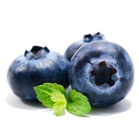 can my eat blueberries can i give my blueberries can i give my