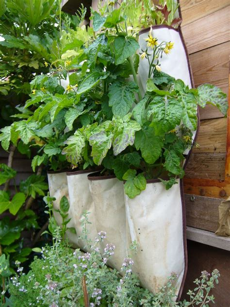 how to grow a herb garden in pots 8 space saving vertical herb garden ideas for small yards