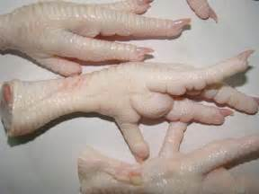 chenhui company pakistan frozen chicken feet