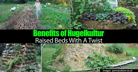 benefits  hugelkultur raised beds   twist