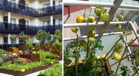 horticultura urbana huerto balcon huertos urbanos en la cocina o el balc 243 n