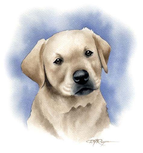 puppy paint labrador retriever puppy watercolor painting print