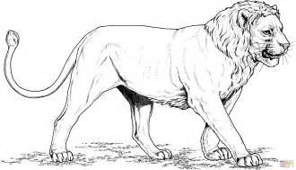 lejon med kort man m 229 larbok gratis m 229 larbilder att skriva ut