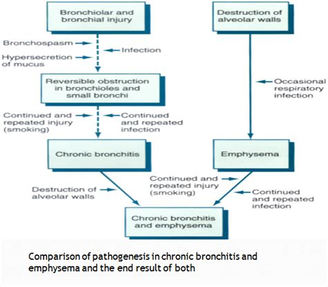 Comparison of Chronic Bronchitis and Emphysema. Geoffrey