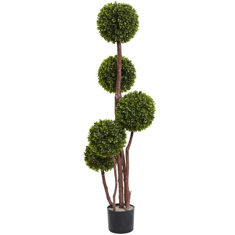 outdoor topiary 4ft uv resistant 5 trunk outdoor boxwood topiary potted