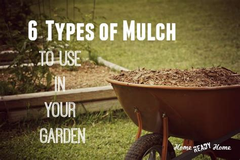 types of mulch for gardens 169 best images about permaculture on gardens