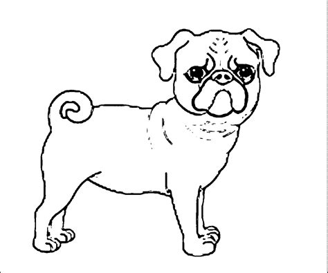 pug puppy coloring page kids coloring