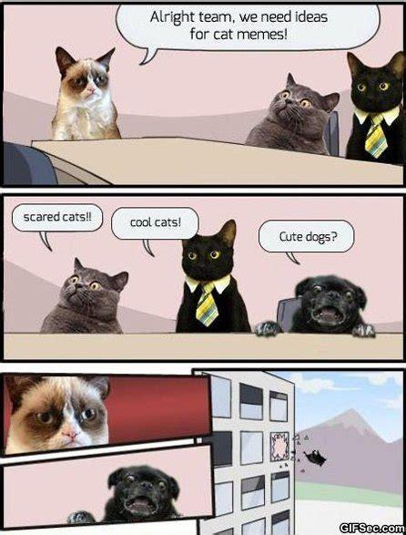 Lol Funny Memes - lol cat memes