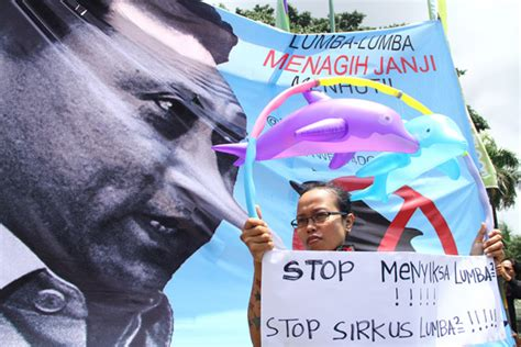 sirkus komsumsi dan perdagangan satwa melanggar hak asasi
