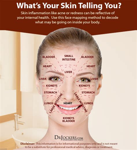 what do you big foreheads mean 10 things acne means about your health drjockers com