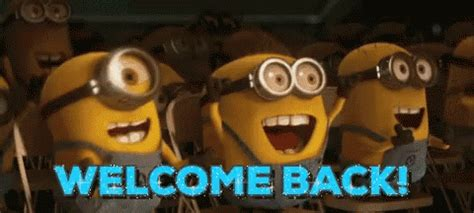 Welcome Back Gif Images welcome back gifs tenor