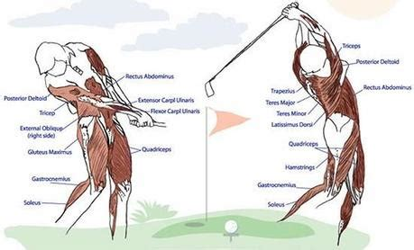 strength training for golf swing golf fitness better body better swing better game
