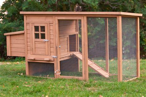 backyard chicken coop for sale budget backyard chicken coops tbn ranch chicken keeping