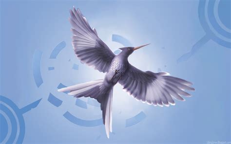 mockingjay bird