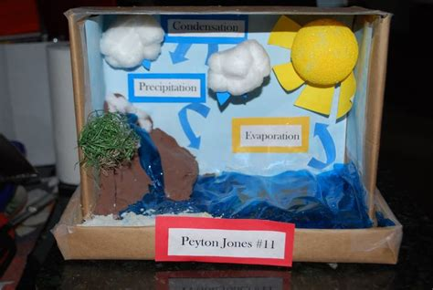 3d projects 3d water cycle project project on the water cycle here