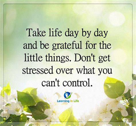 Take Life Dan By Dat And Be Grateful For The Little Things - day by day learning in life