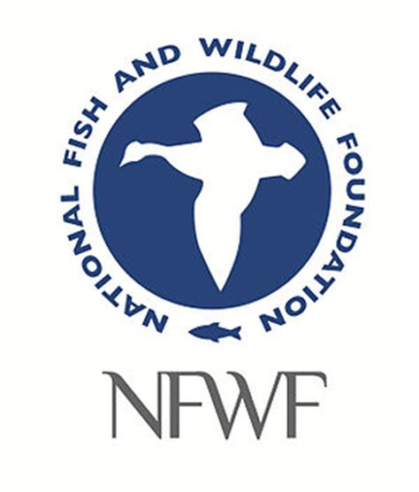 nfwf announces 34 3 million for gulf restoration projects