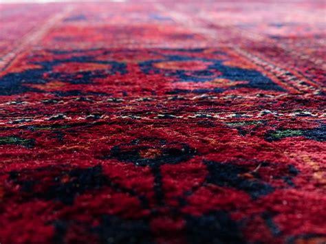 teppich geruch entfernen katzenurin seinen geruch aus teppich oder teppichboden