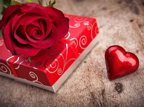 wallpaper couple with rose rose flowers red love romance life for chocolate gift