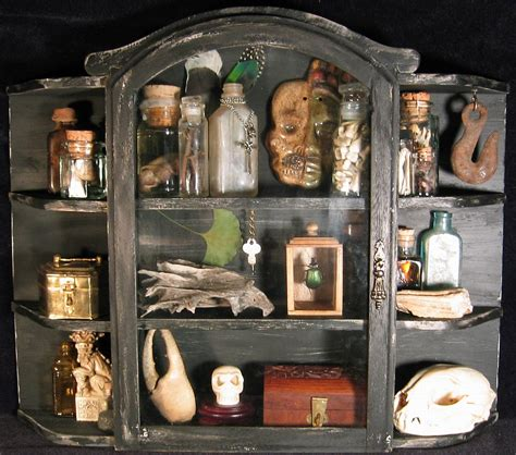 cabinet of curiosities an exhibition space waite