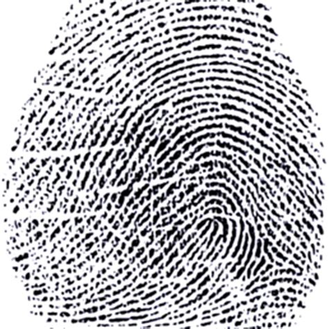 Background Check And Fingerprinting Near Me Arizona Livescan Fingerprinting 35 Reviews