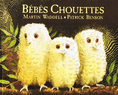 bbs chouettes b 233 b 233 s chouettes owl babies little linguist