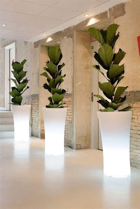 maceteros interior decoraci 243 n con maceteros luminosos