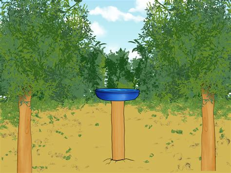 how to build a bird bath 3 steps with pictures wikihow
