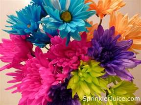 Spring Flowers Pictures Sprinkler Juice Wordless Wednesday Spring Flowers