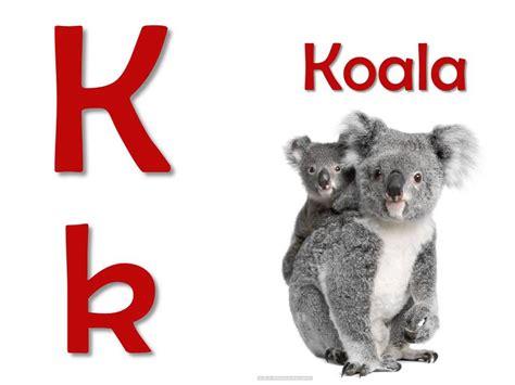 imagenes de animales con w abecedario ilustrado con animales youtube