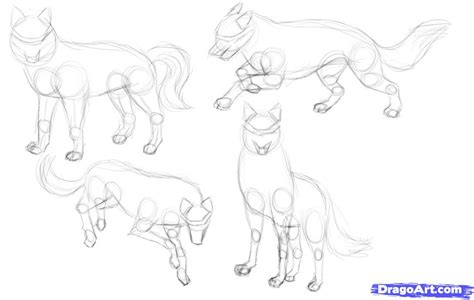 how to drawl a how to draw wolves step by step forest animals animals free drawing