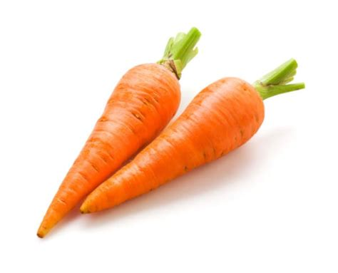 are carrots bad for dogs i didn t this fruit could kill my and it s in my kitchen right now