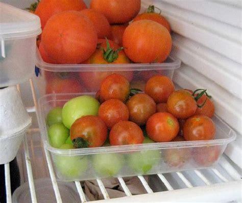 conservare gli alimenti come conservare gli alimenti in frigo e dispensa salute