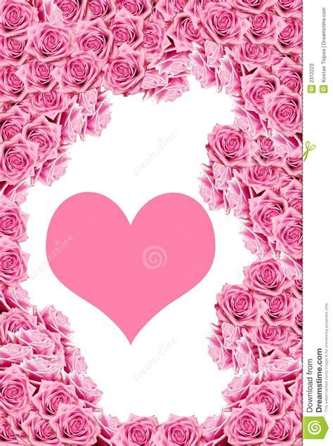 imagenes abstractas rosadas las rosas rosadas con agua caen el ma fotos de archivo