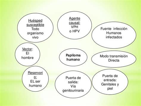 cadena epidemiologica fasciolosis cadenas epidemiologicas