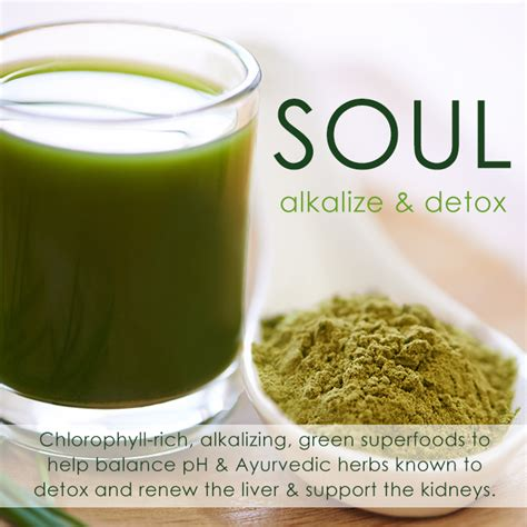 And Soul Liver Detox by Soul Ayurvedic Ph Superfoods Hbnaturals