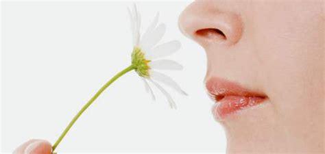 imagenes sensoriales olfativas definicion 6 signos para prevenir enfermedades beevoz