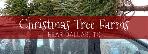 christmas tree farms near dallas tx