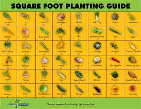 Vegetable Garden Layout Guide 5 Simple Vegetable Garden Design Ideas For All Seasons
