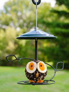onze suus tuiniert on pinterest tuin bird feeders and