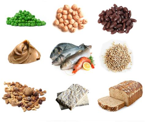 d protein during pregnancy healthy foods to eat during pregnancy ingredientsarc