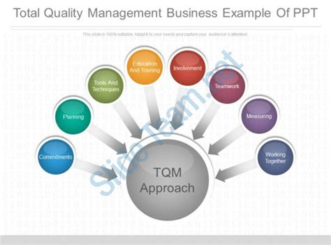 Total Quality Management Project For Mba Pdf by Total Quality Management Business Exle Of Ppt