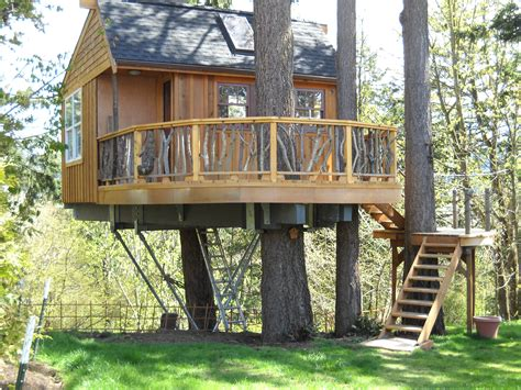tree house builders treehouse builders design of your house its good idea for your life